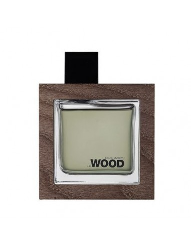 Dsquared He Wood Rocky Mountain Edt 100 ml Spray - TESTER